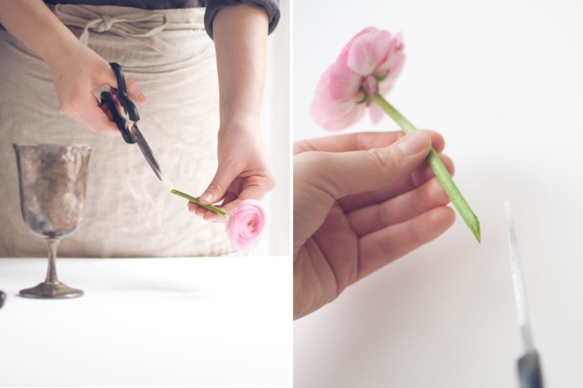 cutting flower stem