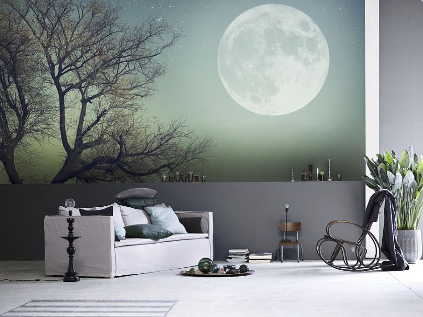 full-moon-wall-mural