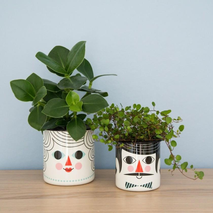 plant care 3