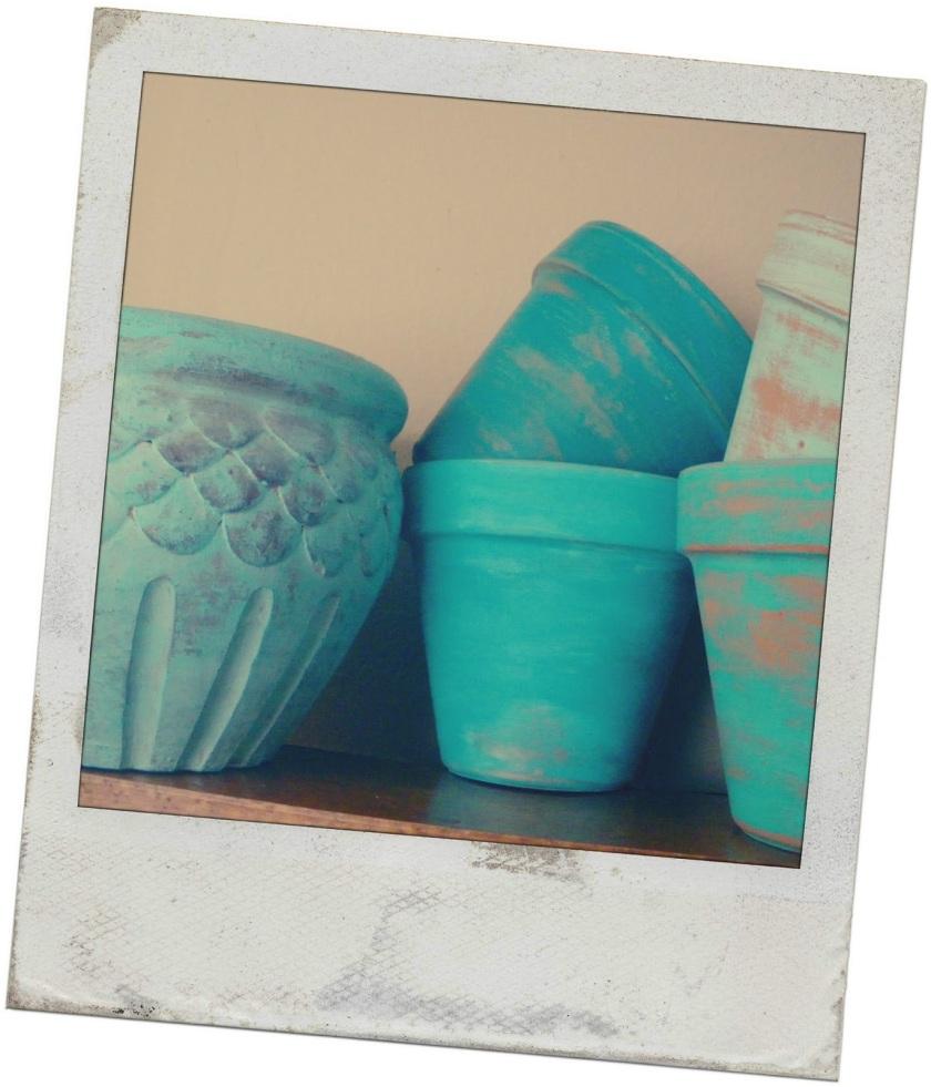 Polaroid Pots