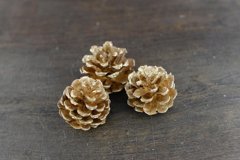 gold-pine-cones-2